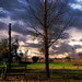 Cielos y campos de la pampa Argentina 5 / Skies and fields from Argentina's pampa 5