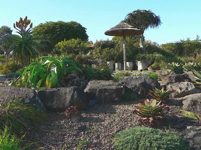 Auckland Botanical Garden Manukau Auckland New Zealand