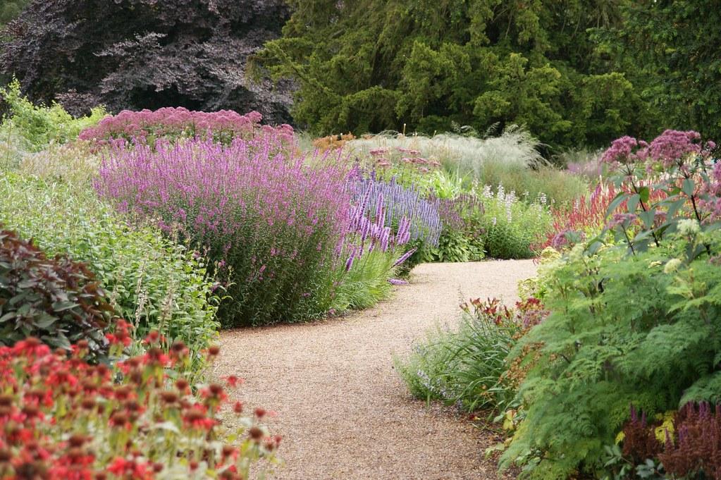 Trentham piet oudolf piet oudolf flickr for Piet oudolf favorite plants