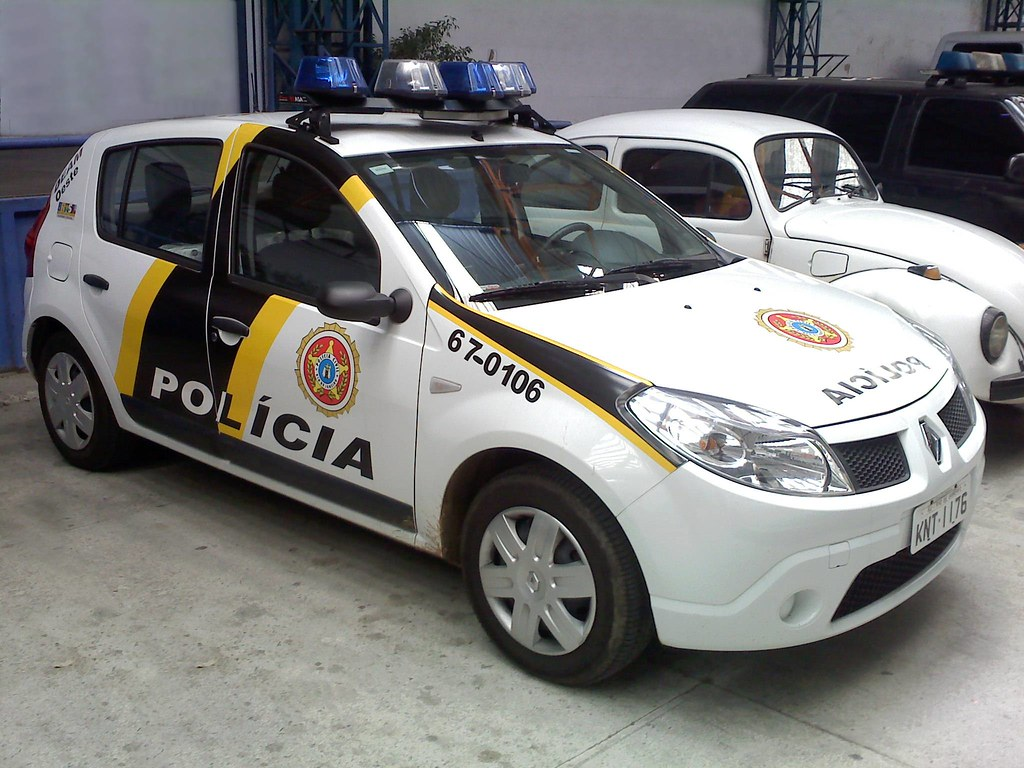 Cars  Brazilian Race Car Name