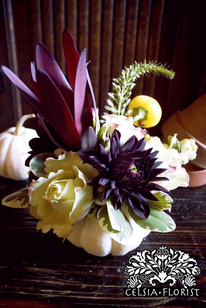 Celsia florist fall pumpkin arrangements vancouver flor