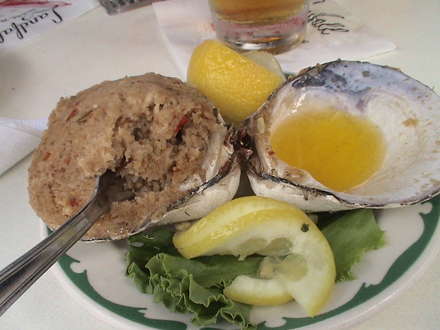 Soft Shell Clams Now Scarce In Long Island Sound