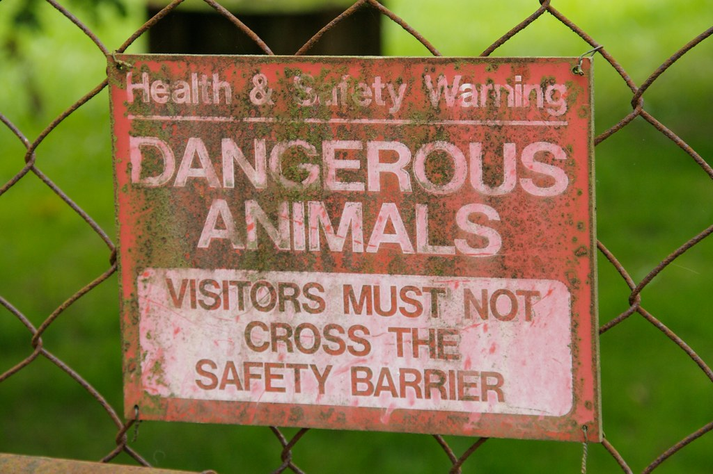 Dangerous Photos of Animal Dangerous Animals Sign at The