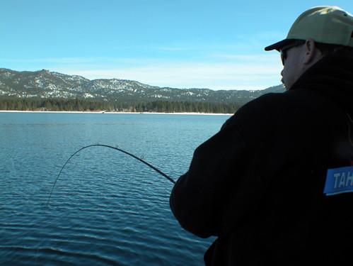 Fish on lake what are california 39 s top fishing for Lake tahoe fish