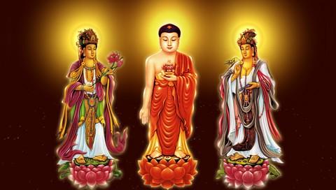 Amitabha Buddha Wallpaper The Sage Pureland 西方三