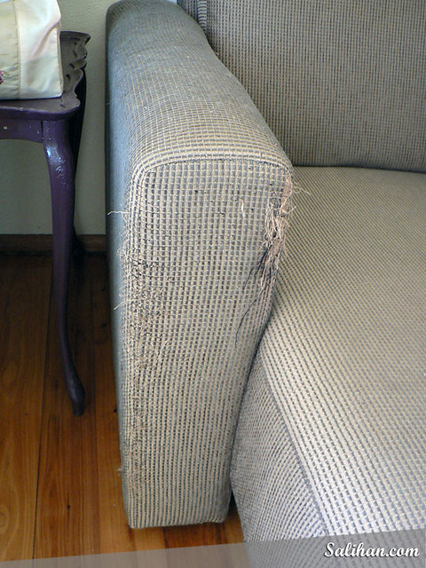 Repair Cat Scratches On Leatherette Furniture