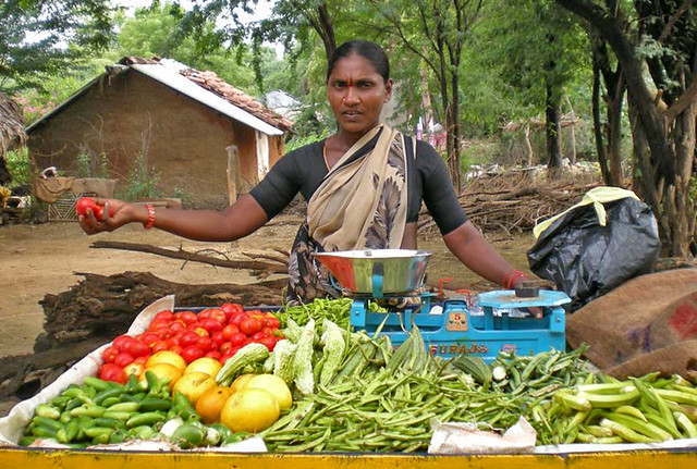 vegetable vendor Xvideos desi vegetable vendor lady using a long vegetable to masturbate free.