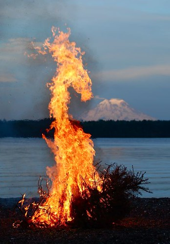 Summer Solstice Fire On The Beach Mt Rainier In