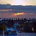 santa monica blue bus at sunset