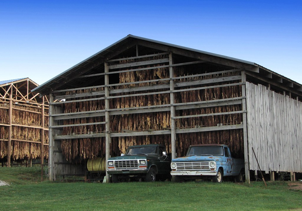 Tobacco barns on a county road not too far from here are for Tobacco barn house plans