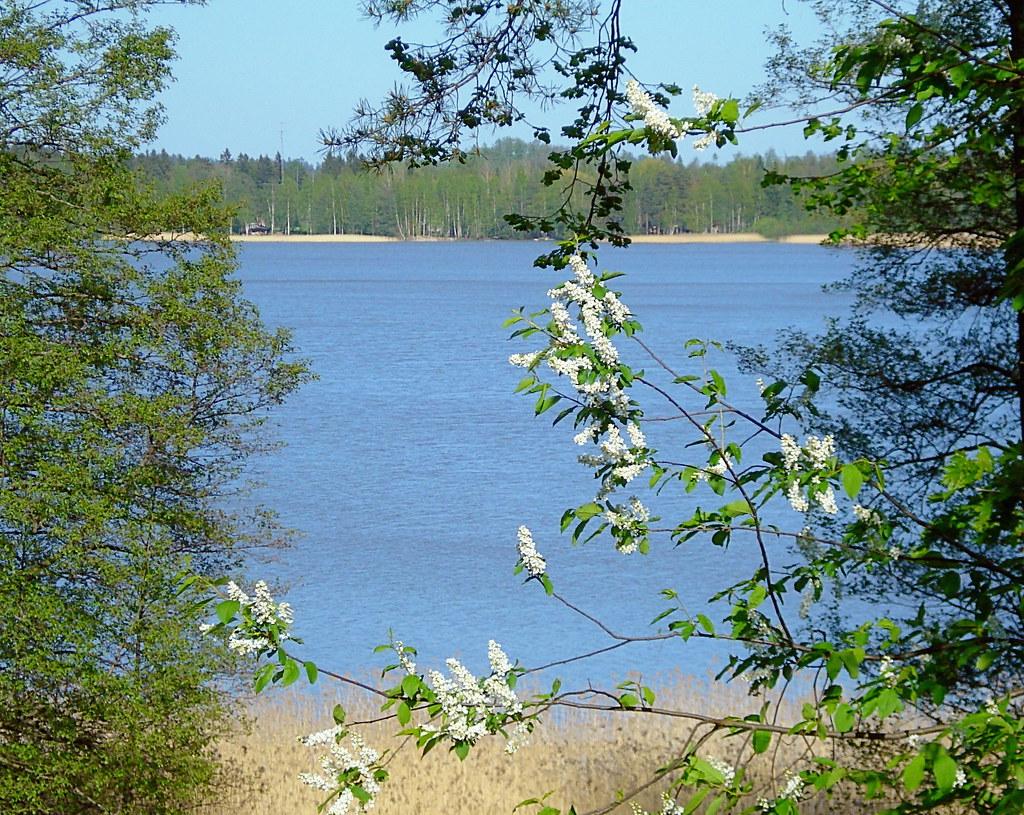 Bodominjärvi