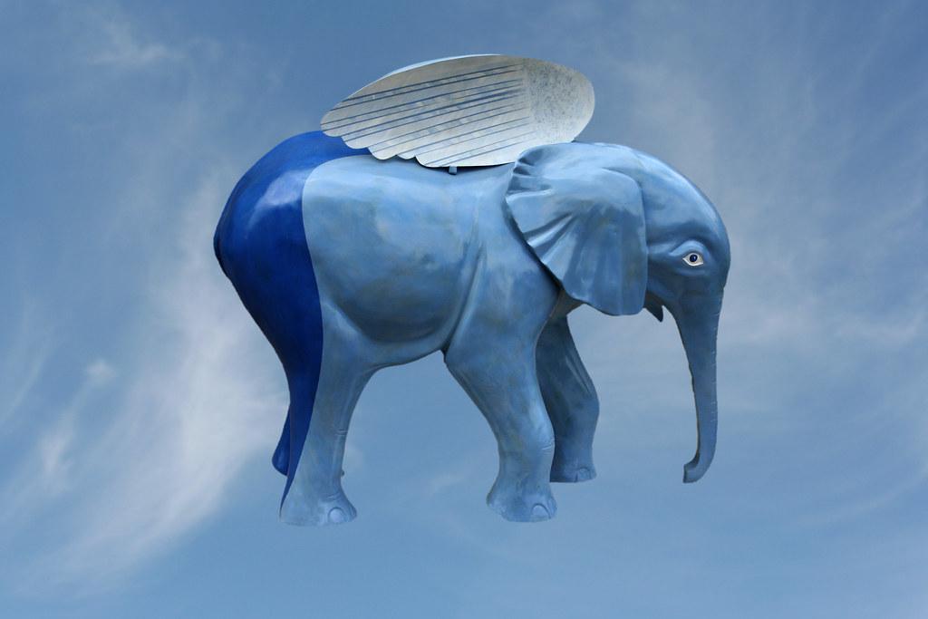 the flying elephant jumbo artist john atkinson go