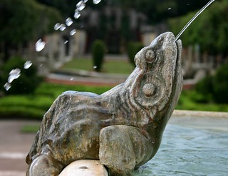 Spitting frog at the Vizcaya Museum, Miami | by Alaskan Dude