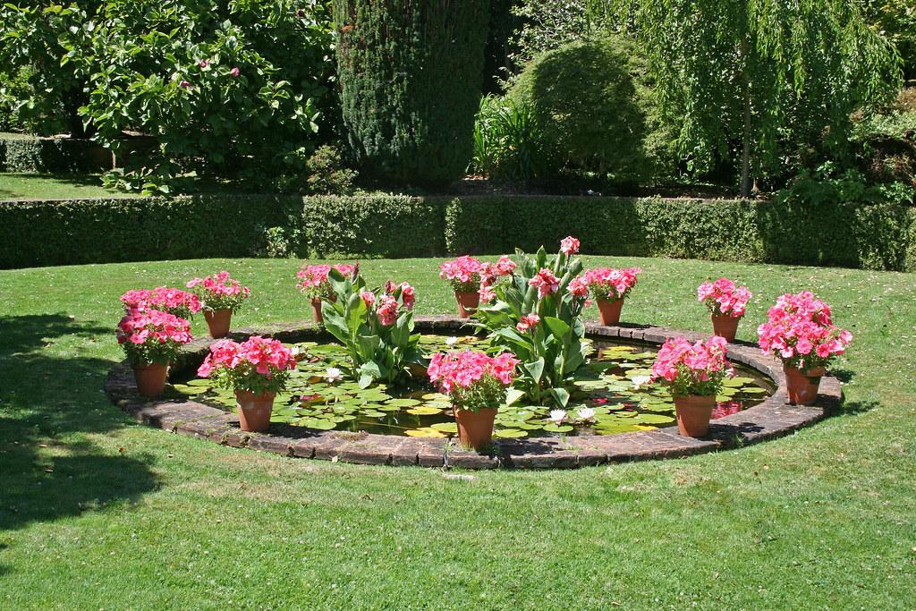 Filoli gardens lily pond jill clardy for Filoli garden pool