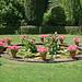 Filoli Gardens - Lily Pond
