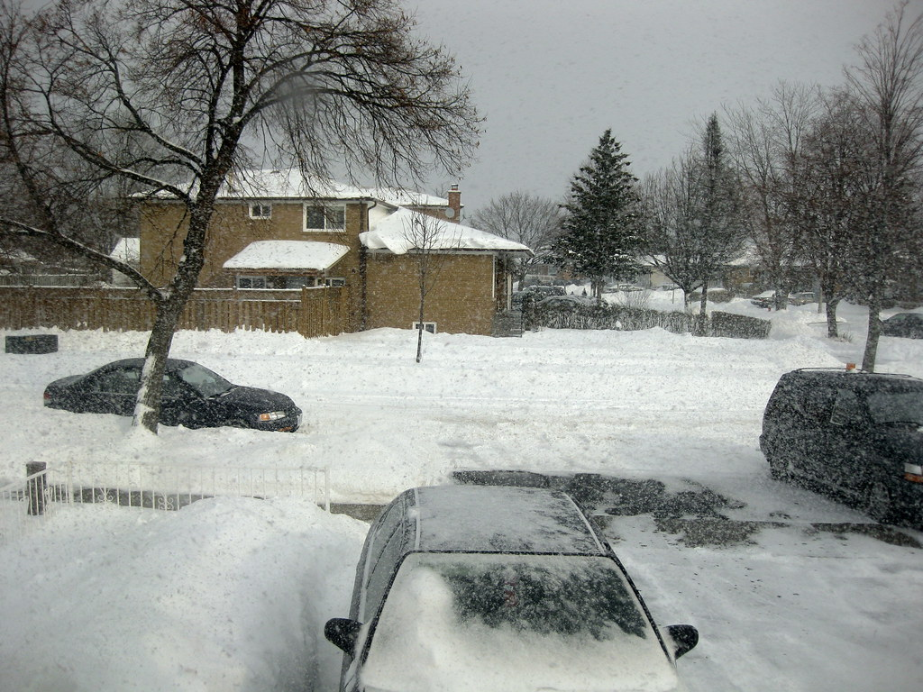 Snow Storm Toronto: Snow Storm In Toronto, GTA On December 21, 2008