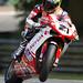 Troy Bayliss World Superbike Champion 2008