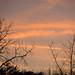 Fall Sunset