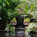 Lamorran House Gardens, Cornwall, UK | A coastal garden with interesting water features (6 of 11)