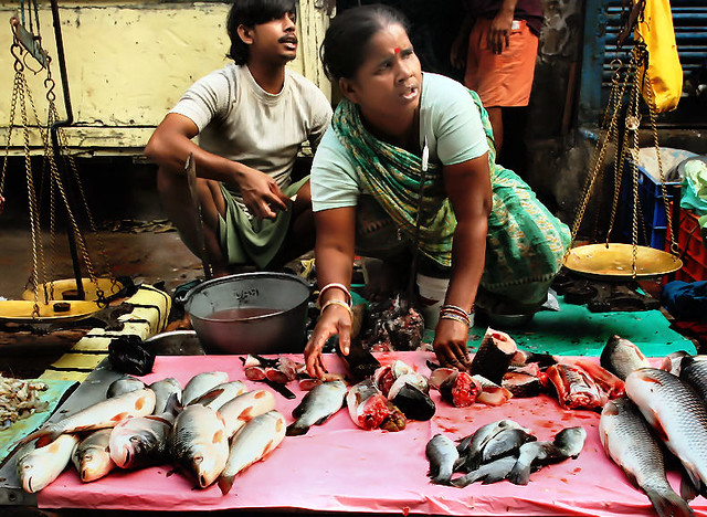 Fish market india its a fast pace morning at the fish for White fish market