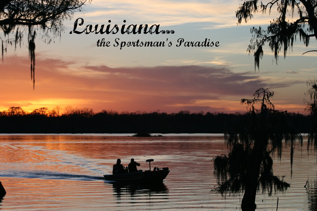 Sportsman's Paradise Online. 16, likes · 19 talking about this. Take a step into nature at SPO.
