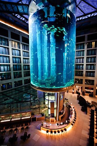 Plus Hotel Berlin Rezension