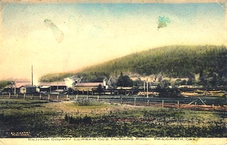 Benton County Lumber Co.'s planing mill, Philomath, Oregon | by OSU Special Collections & Archives : Commons