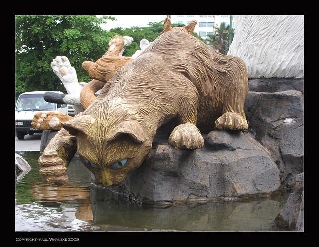 Kuching - The cats of