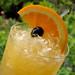 The Original Hurricane Cocktail