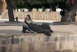 HL11-D06-002-Temple_Mount | by Thomas Fowler
