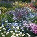 """Spring Gardens at """"Annie's"""" 08"""