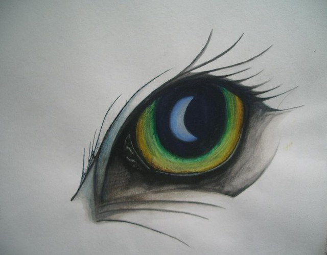 Peacock eye Design Old Work From College Peacock