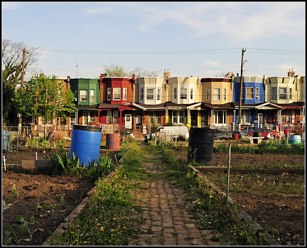 Image Result For How To Start A New Garden