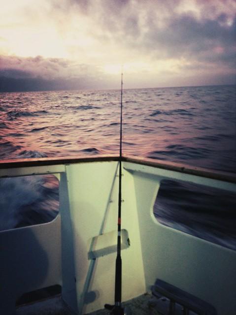 Deep Sea Fishing Out Of Virginia Beach