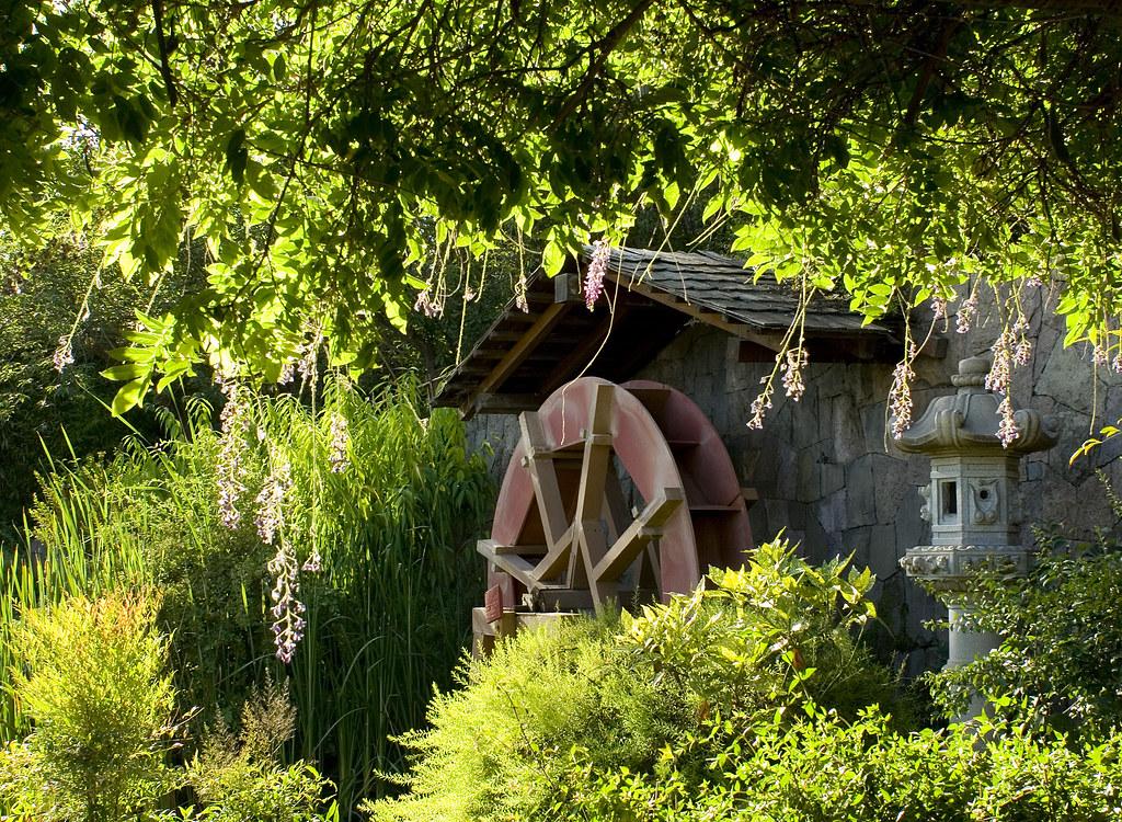Molino de agua / Water mill
