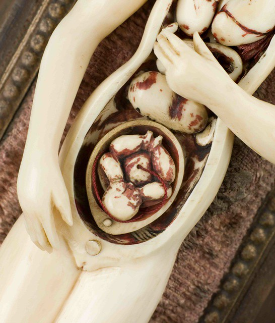 Ivory anatomical figure a pregnant female with some remo flickr ivory anatomical figure a pregnant female with some removable internal organs on wooden ccuart Image collections