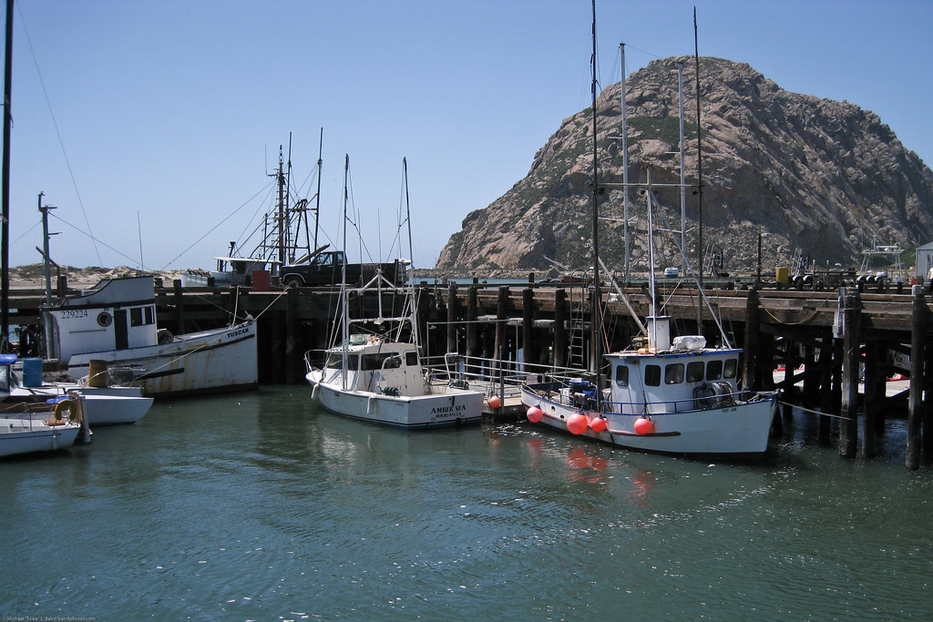 Fishing boats at the north t pier in morro bay ca 16 apri for Morro bay fishing