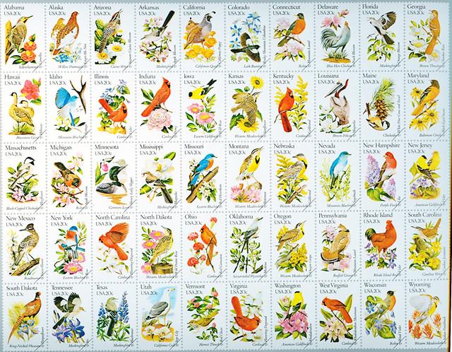50 state birds  flowers  wwwsilsiedulibrariesnpm