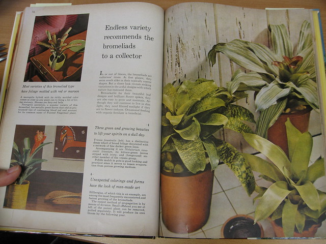 Vintage Garden Book Better Homes And Gardens Hous