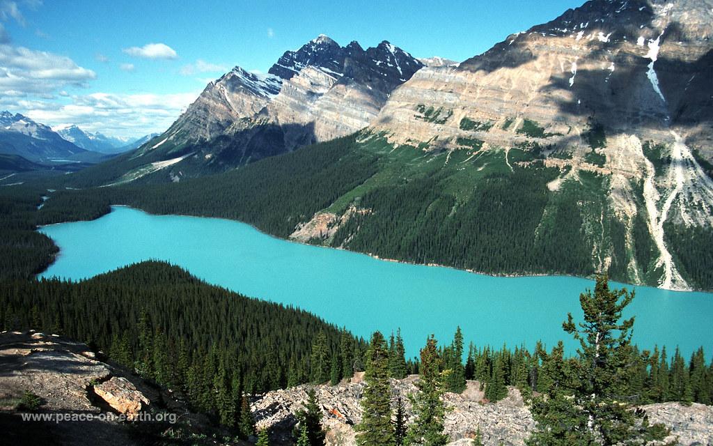 16 10 landscape wallpaper 56 peyto lake canada flickr