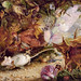 "John Anster Fitzgerald (1819-1906), ""The Chase of the White Mouse"""