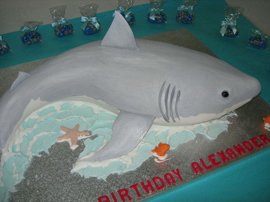 Shark Cake Template. make a shark cake for shark week woo jr kids ...