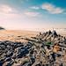 """""""Robin Sparkles - Sandcastles in the Sand"""""""