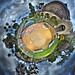Aviary Planet