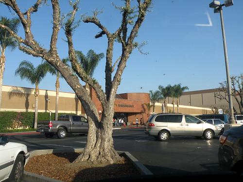 Public Storage North Hollywood Saticoy Dandk Organizer