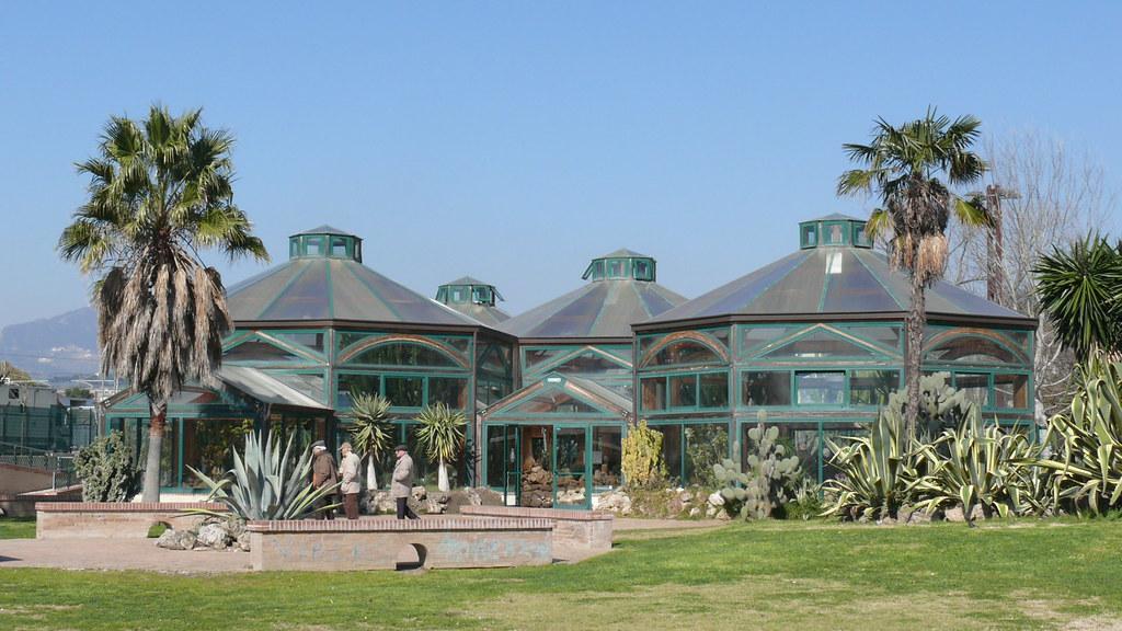 Parco del mercatello salerno serra delle piante grasse for Serra piante grasse