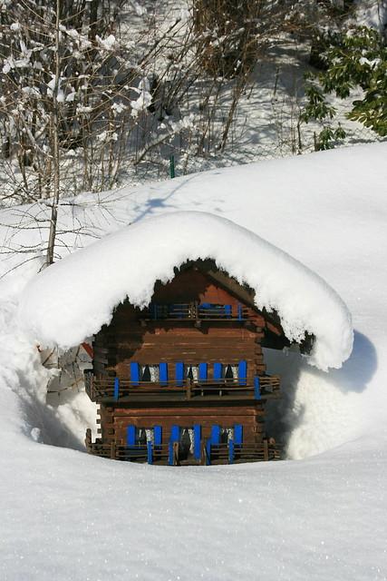 ch 226 let miniature sous la neige explore raz1940 et charlott flickr photo