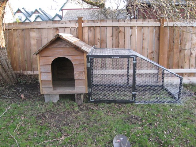 Barrel Dog House Ideas