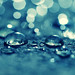 Land of bokeh & water drops