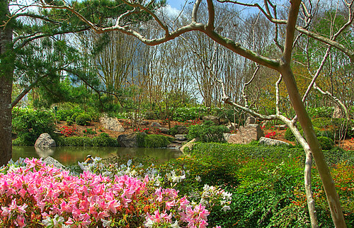 Hermann Park Japanese Gardens Hdr Flickr Photo Sharing